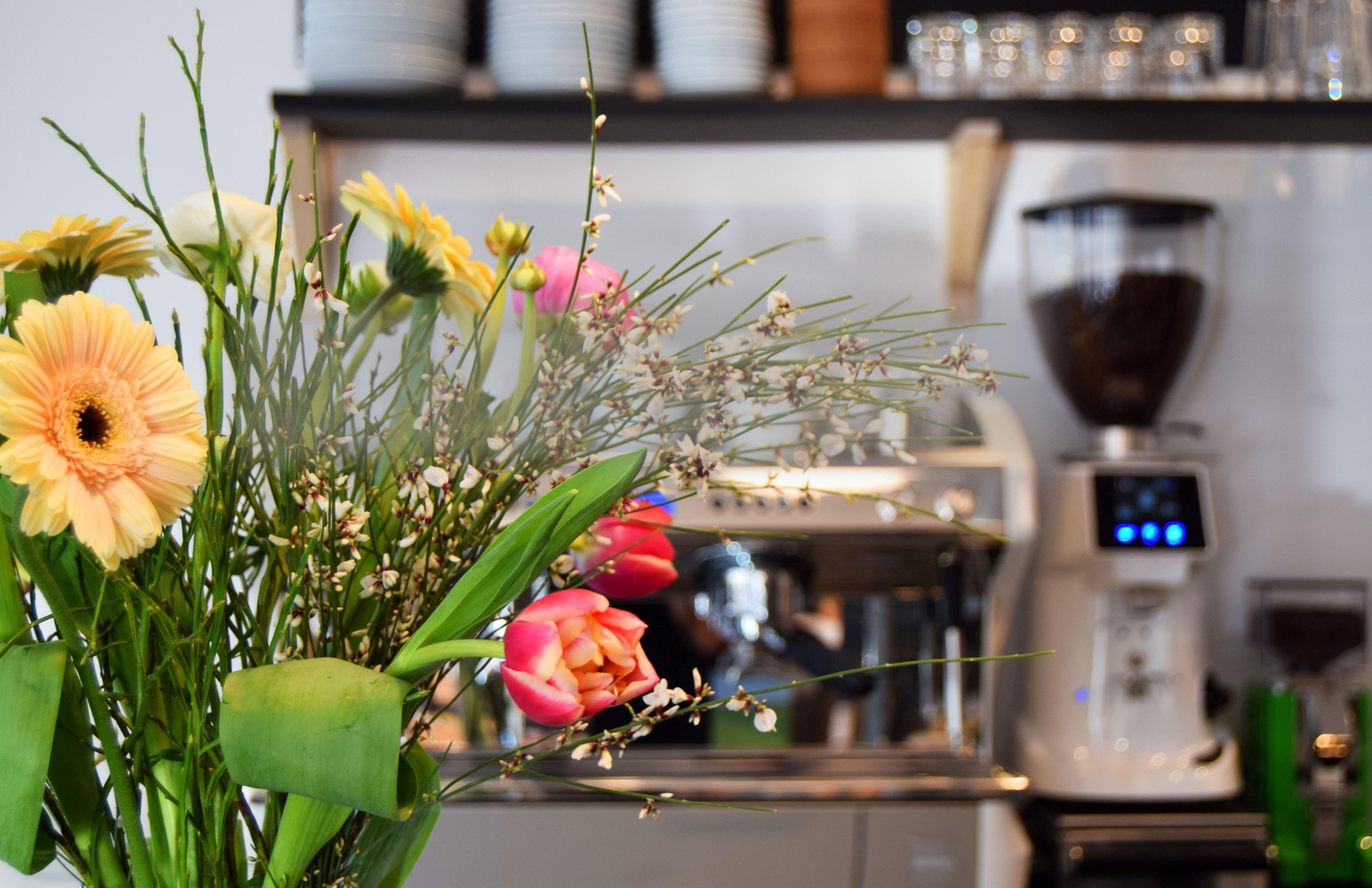 Hausgemachte Kuchen & leckere Kaffeespezialitäten